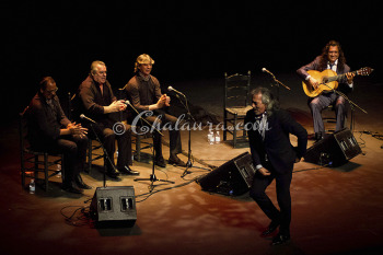 capullo-de-jerez-teatro-central-sevilla-chalaura-espectaculos-06