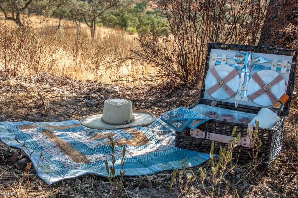 picnic.4