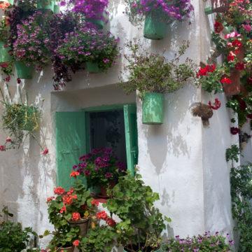 cuartodemaravillas-patios-de-cordoba.4
